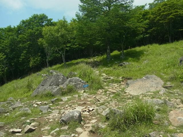 乾徳山(銀晶水・徳和コース)登山口コースガイド 扇平【登山口ナビ】
