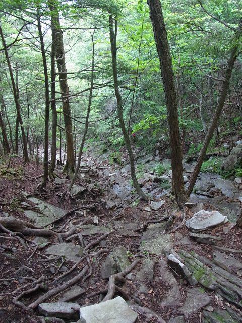 乾徳山(銀晶水・徳和コース)登山口コースガイド 迂回下山道ガレ場【登山口ナビ】