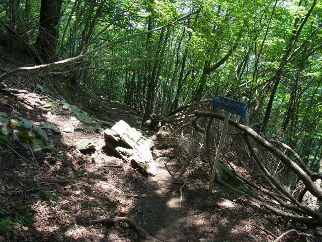 乾徳山(銀晶水・徳和コース)登山口コースガイド 迂回下山道【登山口ナビ】