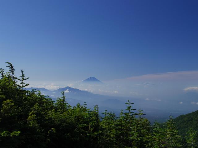 八ヶ岳・横岳(県界尾根)登山口コースガイド 小天狗からの富士山【登山口ナビ】
