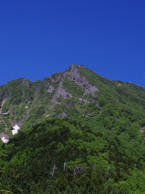 八ヶ岳・横岳(県界尾根)登山口コースガイド ヘリポート跡【登山口ナビ】