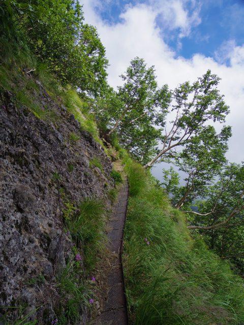 八ヶ岳・横岳(県界尾根)登山口コースガイド 鉄板の桟道【登山口ナビ】