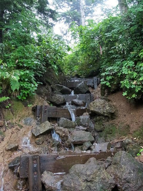 燧ヶ岳 俎嵓・柴安嵓(御池コース)階段の急登 【登山口ナビ】