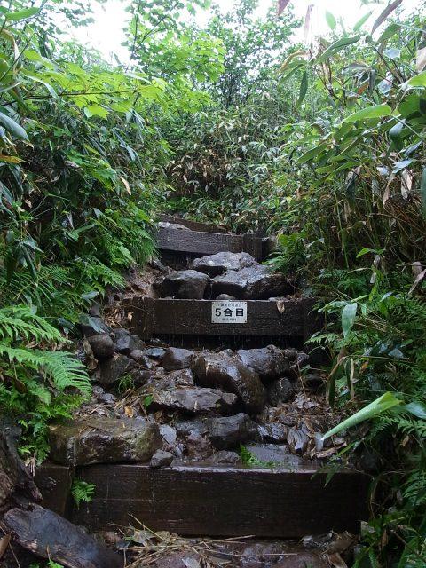 燧ヶ岳 俎嵓・柴安嵓(御池コース)5合目 【登山口ナビ】