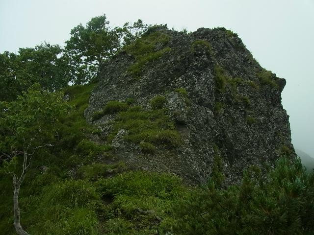 八ヶ岳・阿弥陀岳(立場岳~南陵尾根)登山口コースガイド 南陵尾根P1峰【登山口ナビ】