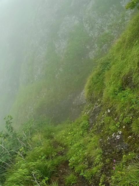 八ヶ岳・阿弥陀岳(立場岳~南陵尾根)登山口コースガイド 南陵尾根P3峰トラバース【登山口ナビ】