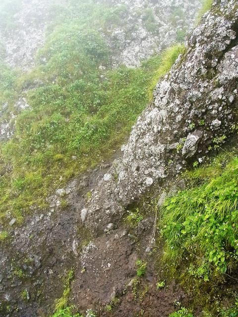 八ヶ岳・阿弥陀岳(立場岳~南陵尾根)登山口コースガイド 南陵尾根P3峰ルンゼ取りつき【登山口ナビ】