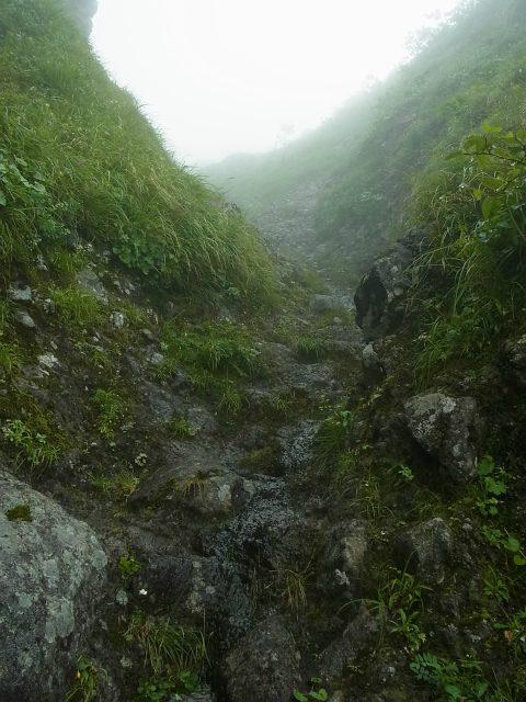 八ヶ岳・阿弥陀岳(立場岳~南陵尾根)登山口コースガイド 南陵尾根P3峰60mルンゼ【登山口ナビ】