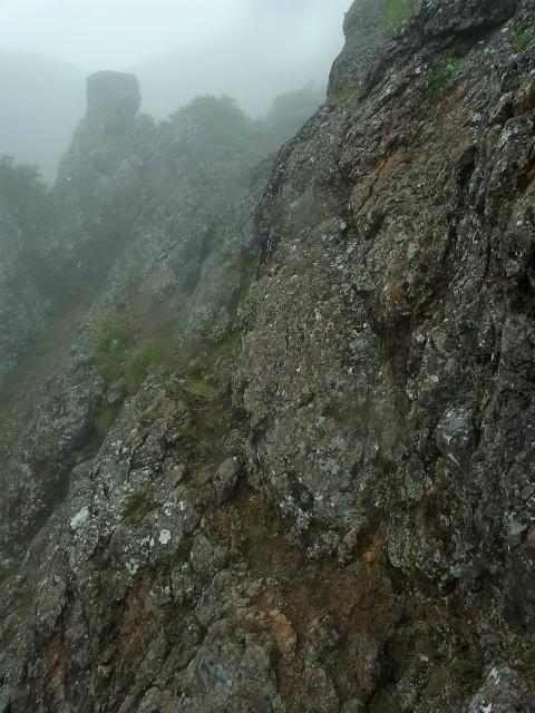 八ヶ岳・阿弥陀岳(立場岳~南陵尾根)登山口コースガイド 南陵尾根P4峰基部トラバース【登山口ナビ】