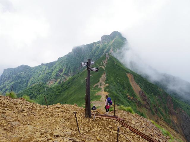 八ヶ岳・赤岳(南沢~文三郎尾根) 登山口コースガイド 中岳分岐【登山口ナビ】