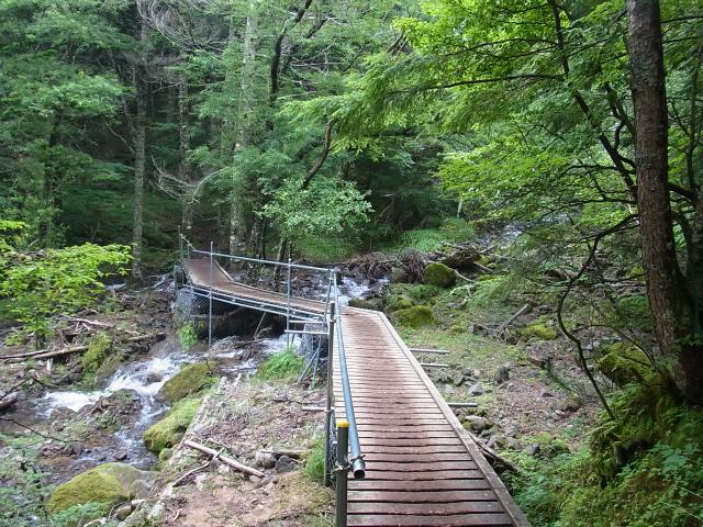 八ヶ岳・阿弥陀岳(南沢~中岳のコル) 登山口コースガイド 南沢コース橋【登山口ナビ】