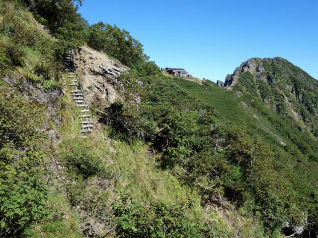八ヶ岳・横岳(県界尾根)登山口コースガイド トラバース路【登山口ナビ】