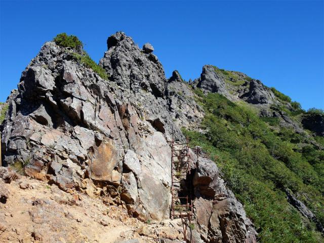 八ヶ岳・横岳(県界尾根)登山口コースガイド 二十三夜峰の階段【登山口ナビ】