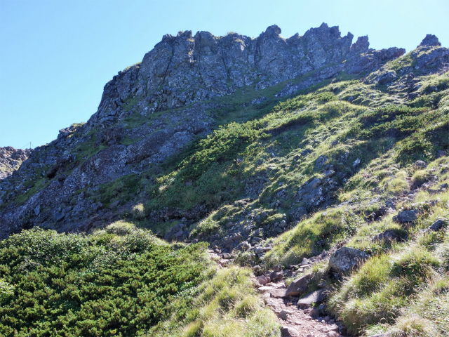 八ヶ岳・横岳(県界尾根)登山口コースガイド 鉾岳の岩峰【登山口ナビ】