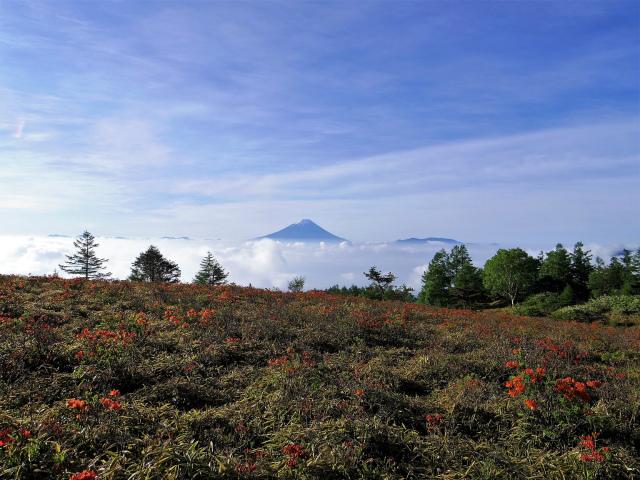 辻山(甘利山~千頭星山)登山口コースガイド 甘利山からの富士山【登山口ナビ】