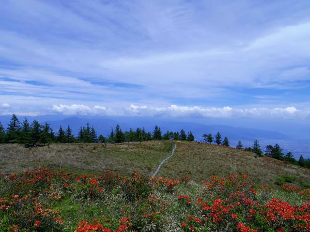 辻山(甘利山~千頭星山)登山口コースガイド 甘利山からの奥秩父・大菩薩連嶺【登山口ナビ】