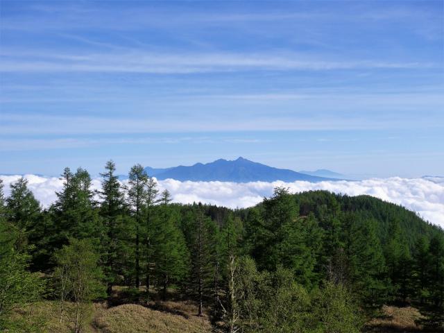 辻山(甘利山~千頭星山)登山口コースガイド 稜線からの八ヶ岳の眺望【登山口ナビ】