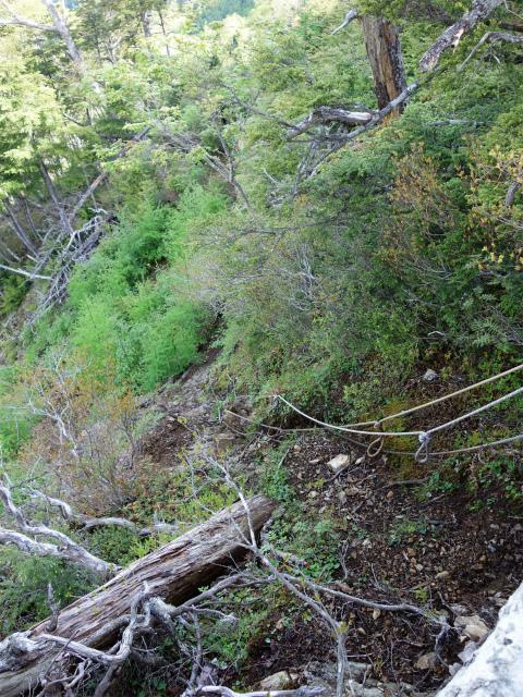 辻山(甘利山~千頭星山)登山口コースガイド ロープの急坂【登山口ナビ】