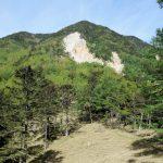 辻山(甘利山~千頭星山)登山口コースガイド 大ナジカ峠からの辻山【登山口ナビ】