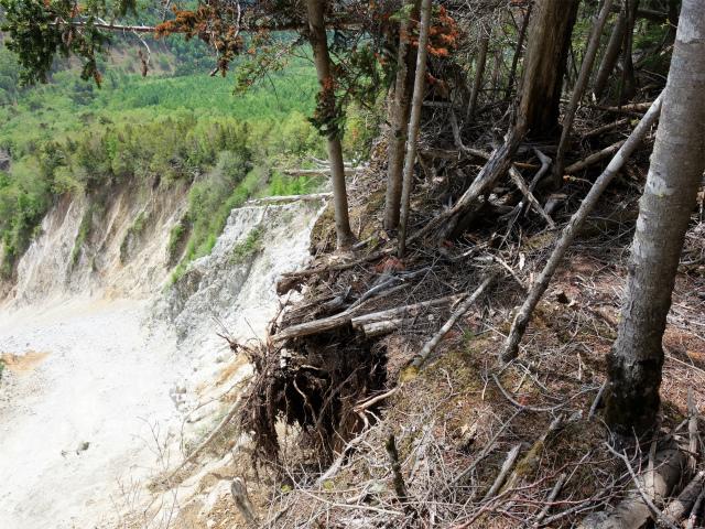 辻山(甘利山~千頭星山)登山口コースガイド 登山道の崩壊箇所【登山口ナビ】