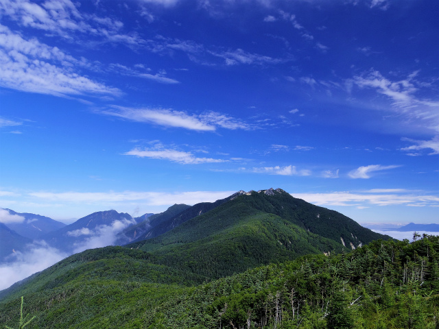 鳳凰三山(夜叉神峠~砂払岳)登山口コースガイド 辻山山頂からの甲斐駒ケ岳・鳳凰山【登山口ナビ】