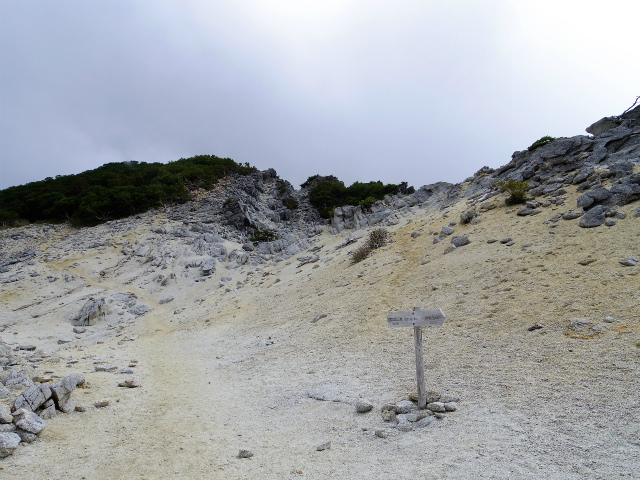 鳳凰三山(広河原~白鳳峠・高嶺)登山口コースガイド 鳳凰小屋近道分岐【登山口ナビ】