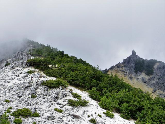 鳳凰三山(夜叉神峠~砂払岳)登山口コースガイド 観音岳鞍部からの地蔵岳オベリスク【登山口ナビ】