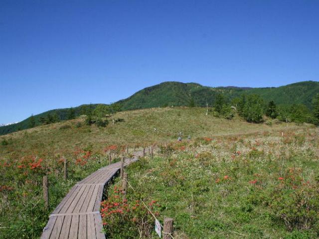 辻山(甘利山~千頭星山)登山口コースガイド 木道【登山口ナビ】