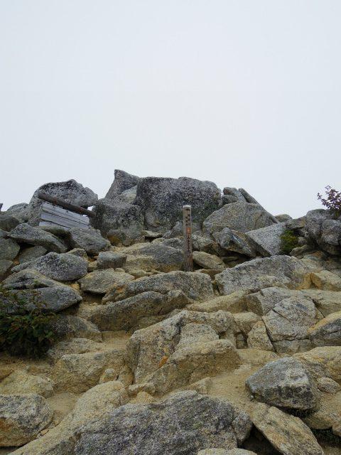 鳳凰三山(夜叉神峠~砂払岳)登山口コースガイド 観音岳山頂【登山口ナビ】