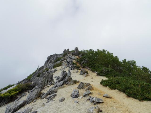 鳳凰三山(夜叉神峠~砂払岳)登山口コースガイド 観音岳【登山口ナビ】