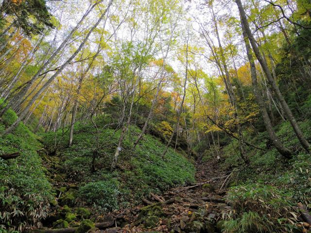 皇海山・鋸山(不動沢コース)登山口コースガイド 二俣【登山口ナビ】