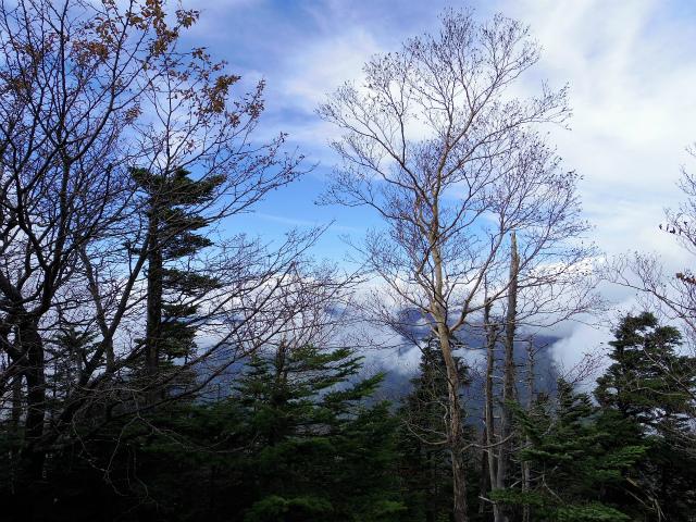 皇海山・鋸山(不動沢コース)登山口コースガイド 山頂見晴し【登山口ナビ】