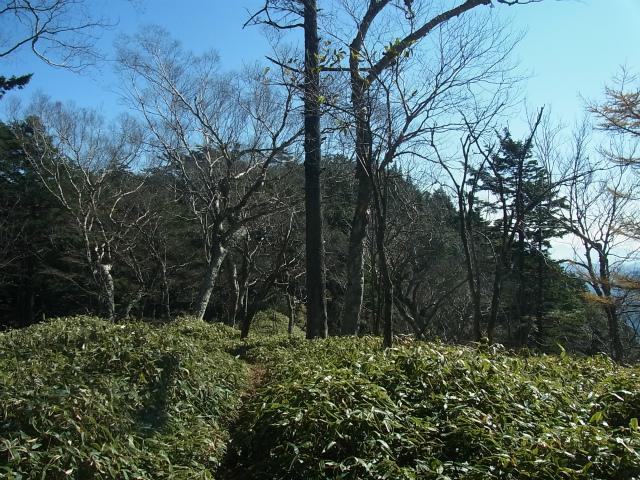 笠取山~唐松尾山~御殿岩 登山口コースガイド 縦走路【登山口ナビ】