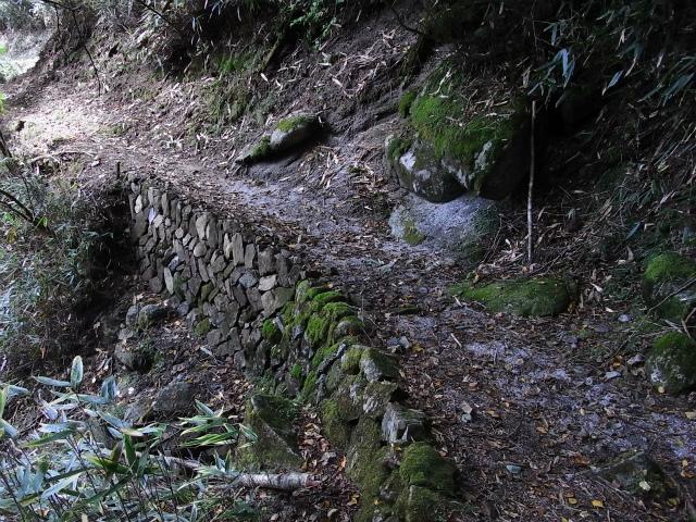 笠取山~唐松尾山~御殿岩 登山口コースガイド 中間道【登山口ナビ】