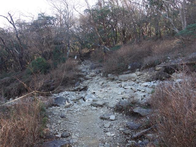 天城山(万二郎岳~万三郎岳周回)登山口コースガイド ガレ場【登山口ナビ】