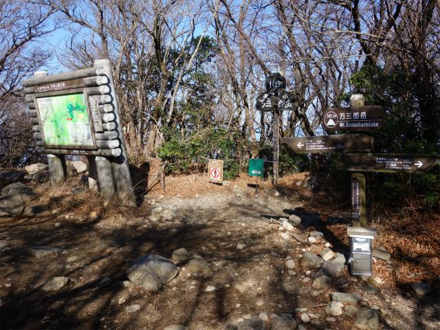 天城山(万二郎岳~万三郎岳周回)登山口コースガイド 万三郎岳山頂【登山口ナビ】