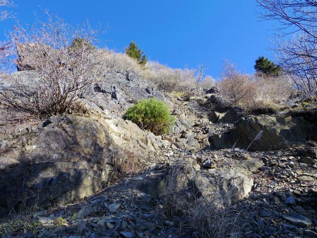 大菩薩嶺(富士見新道) 登山口コースガイド ガレ場【登山口ナビ】