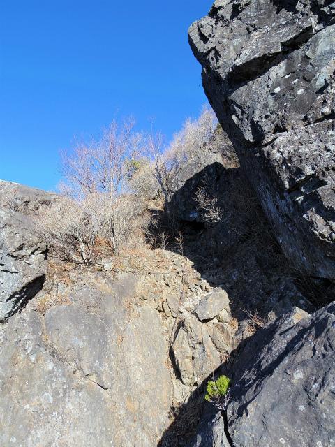 大菩薩嶺(富士見新道) 登山口コースガイド テラスの基部【登山口ナビ】