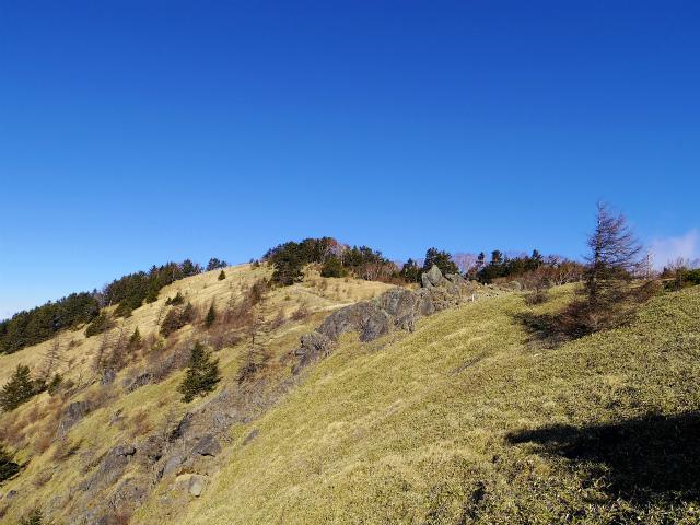 大菩薩嶺(富士見新道) 登山口コースガイド 稜線【登山口ナビ】