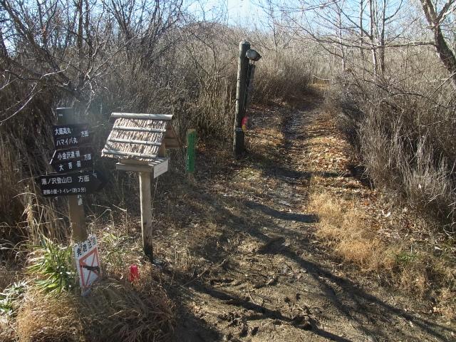 大蔵高丸(湯ノ沢峠コース) 登山口コースガイド 湯ノ沢峠稜線分岐【登山口ナビ】
