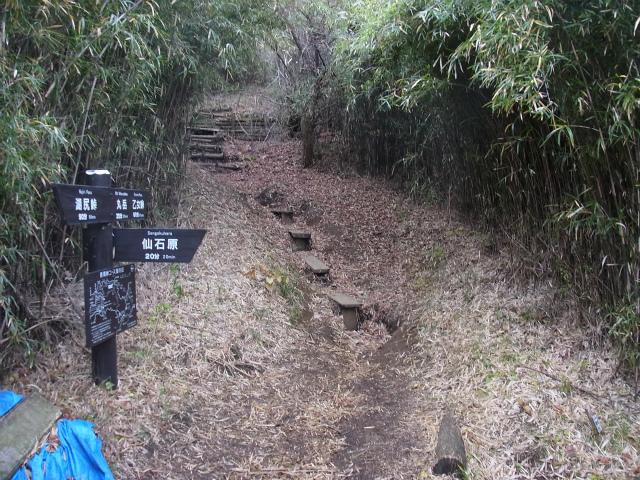 金時山(長尾峠~丸岳~乙女峠) 稜線コース長尾峠駐車場分岐【登山口ナビ】