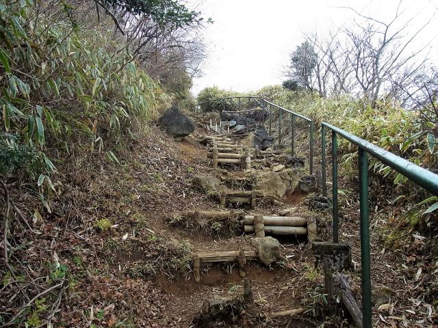 金時山(長尾峠~丸岳~乙女峠)登山口コースガイド ハコネザサの階段【登山口ナビ】