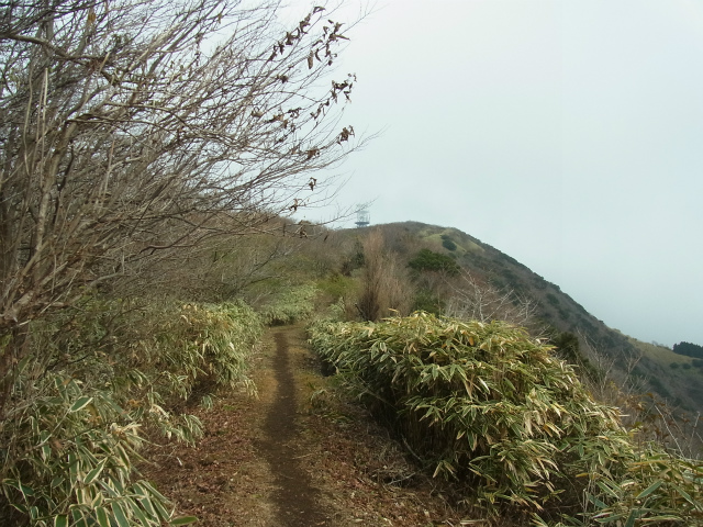 金時山(長尾峠~丸岳~乙女峠)登山口コースガイド 無線中継塔の建つ丸岳山頂【登山口ナビ】