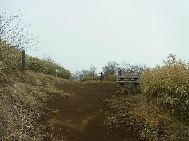 金時山(長尾峠~丸岳~乙女峠)登山口コースガイド 丸岳山頂【登山口ナビ】