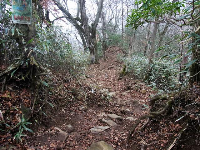 金時山(長尾峠~丸岳~乙女峠)登山口コースガイド【登山口ナビ】