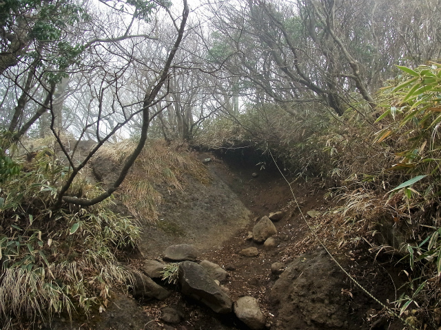 金時山(長尾峠~丸岳~乙女峠)登山口コースガイド 補助ロープ【登山口ナビ】