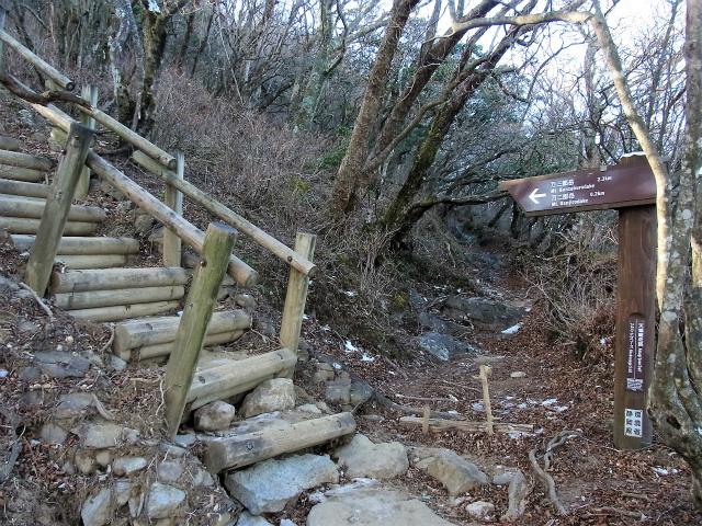 天城山(万二郎岳~万三郎岳周回)登山口コースガイド 階段【登山口ナビ】
