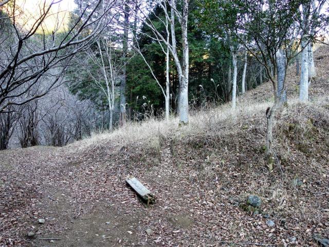 鍋割山(二俣~後沢乗越コース)コースガイド ショートカット道【登山口ナビ】