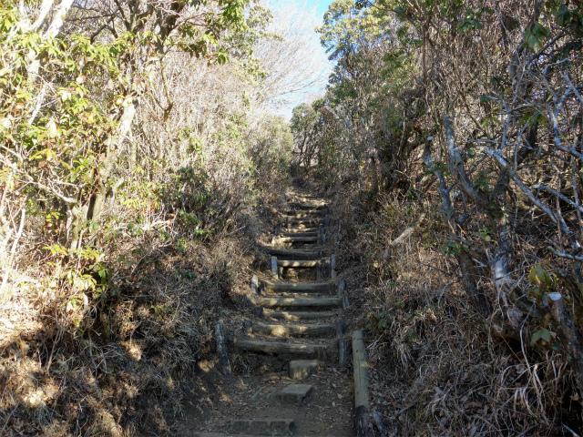 鍋割山(二俣~後沢乗越コース)コースガイド 山頂直下の階段【登山口ナビ】