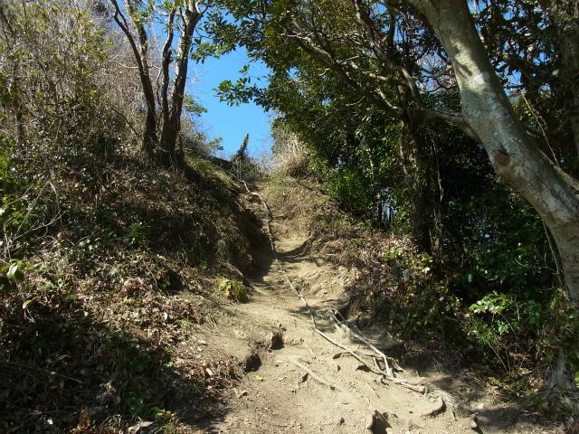 伊予ヶ岳(平群天神社コース) 登山口コースガイド 北峰の登り返し【登山口ナビ】
